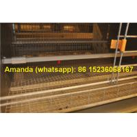 Buy cheap Chicken Farming Hot Galvanized Cage H Type Battery Baby Layer Chicken Cage & Layer Cage in Chicken Shed in South Africa from wholesalers