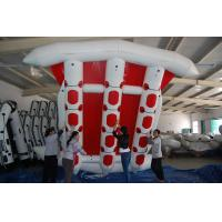 Commercial Grade Durable 12 Person PVC Inflatable Flying Fish Boat Manufactures