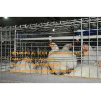 Quality Broiler Farming Galvanized Steel Sheet Silver Battery  Broiler Chicken Cage & Chicken Coop for sale