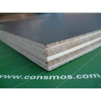 Combi Core Film Faced Plywood (CM 022) Manufactures