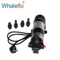 WHALEFLO DP-100M 220v ac 100 psi high pressure electric motor powerful pump /electric water pump Manufactures