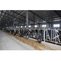 Poultry Farm Building Structure Manufactures
