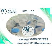 Human Growth Hormone Peptides Steroids IGF-1 LR3  For Fat Loss And Bodybuilding Manufactures