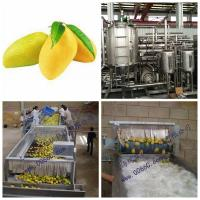 Paste Processing Line Mango Processing Line Plant In PET Glass Packing Manufactures