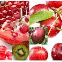 China Juice powder (pomegranate juice powder, kiwi juice powder, grape juice powder, cherry juice powder on sale