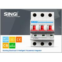 C40 40A / 220V / 380V Miniature Circuit Breakers / household circuit breakers Manufactures
