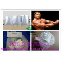 Male Hormones Legal Anabolic Steroids Testosterone Undecanoate CAS 5949-44-0 Manufactures