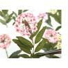 Handmade DIY Decoration Dried Pressed Flowers / Preserving Pressed Flowers Manufactures