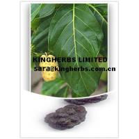 Noni extract Manufactures