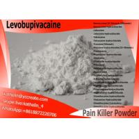 Surgical Anaesthesia Powder Local Anesthetic Drugs Levobupivacaine CAS NO 27262-47-1 Manufactures