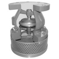 China Ductile Iron Epoxy Coating Foot Valve With Stainless Steel SS304 Strainer / Bottom Valve on sale