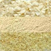 For sale Dried Garlic Flakes Global Foods Dry garlic dehydrated garlic Flakes Manufactures