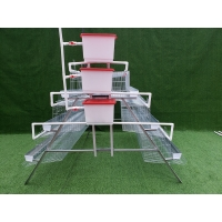 China 2020 Hot sale automatic chicken egg layer cage animal husbandry cages poultry farming equipment on sale