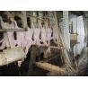 Abattoir equipment Manufactures