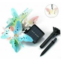 Multi Color Solar Powered String Garden Lights , 10 LED Fiber Optic Butterfly Night Light Manufactures