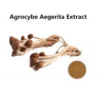 Organic Agrocybe Mushroom Extract Powder Anti - Aging, Medicinal Mushroom Extract Powder Cancer Treatment Manufactures