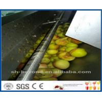 CE Apple Processing Line with Automatic Disinfection Liquid Concentration Control System Manufactures