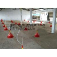Poultry & Livestock Farm Plastic Red Orange Plasson Drinker Automatic Drinking System for Chicken Floor Raising System Manufactures