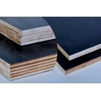 China China high quality poplar formwork shutter plywood for construction on sale