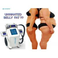 Non Invasive Coolplas Slim Freeze Fat Freeze Slimming Machine With Touch Screen Manufactures