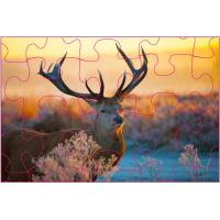 Educational Kids 3D Puzzle Games / 3D Lenticular Printing Jigsaw Puzzles Manufactures