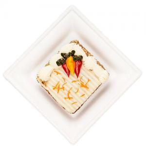 6 Inch 10g Cake Rectangle Biodegradable Sugarcane Plates