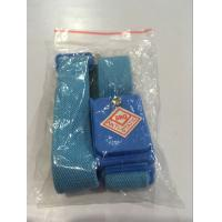 blue wireless adjustable ESD nylon wrist band Manufactures