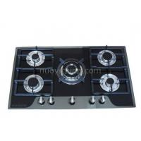 Built-in Type Gas Stove_NY-QB5022 Manufactures