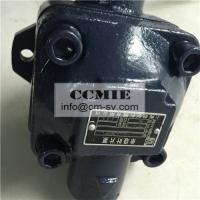Standard Size Road Roller Spare Parts Vane Pump FCC/SGS/ISO9001 Manufactures