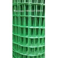 PVC welded wire mesh fence rolls chicken cage Manufactures