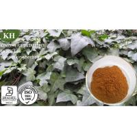 Ivy Extract, Hvedera helix extract, Hederacoside C 10%, 20% Manufactures
