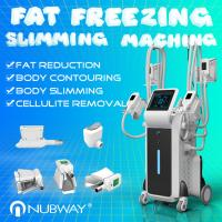 China Professional Forimi cool sculpting technology body slimming weight loss cryolipolysis machine on sale