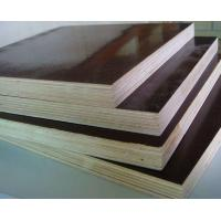 Concrete Form Plywood Board, Anti-Slip Film Faced Plywood Manufactures