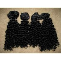 Hot Sale Fashion & Beautiful Human Hair Extension Afro Kinky Curl Hair Piece