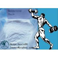 99% Purity White Powder Boldenone Steroid for Body Building CAS 846-48-0 Manufactures