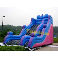 Outdoor Durable Inflatable Slide With Simple But Gental For Amusement Park Manufactures