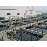 Slaughter Industrial Water Treatment Systems Custom Color Easy Operation Manufactures