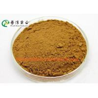 Anti Histamine Apple Natural Plant Extracts 25% Quercetin For Preventing Cancer Manufactures