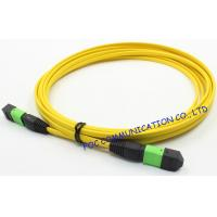 Ribbon Fan Out MPO Multimode Fiber Optic Patch Cord Assembly FTTX Manufactures