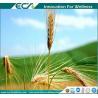 Premium Health Supplements, Zero- added, Instant Oat Powder, Low viscosity, GREAT Taste ; Natural origin Manufactures