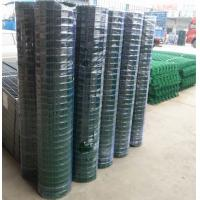 PVC coated holland wire mesh fence black green wire mesh