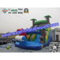 Bounce House Charming Inflatable Slide , Kids Inflatable Water Slides Pool Manufactures