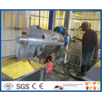 Fruit Juice Double Stage 10TPH Mango Processing Line Manufactures