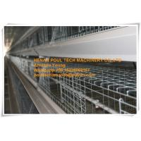 Quality Chicken Farm Steel Sheet Silver White  Small Chick Cage &  Pullet Cage  with Feeding&Drinking System for sale