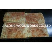 China European Poplar Walnut Burl Wood Veneer Architectonic Woodwork on sale