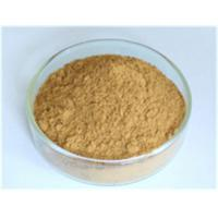 China Astragalus Root Extract,Astragalus Root Extract lowering blood lipid,Astragalus Root Extract protect liver Manufacturer, on sale