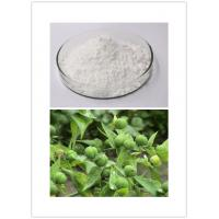 30220-46-3 Ingenol Natural Cosmetic Ingredients Makeup Ingredients 98% Purity Manufactures