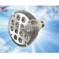 High power 85 - 265V AC, 50Hz - 60Hz, E26 12W green / blue PAR38 LED Spot Lamps Manufactures