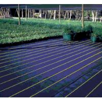 using weed fabric vegetable garden Landscaping Fabric/Weed Mat Manufactures