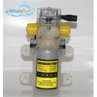 Whaleflo 70W 12/24v dc Food Grade Diaphragm Water Pump for Wine Milk Self-priming Booster Pump with Automatic Switch Manufactures